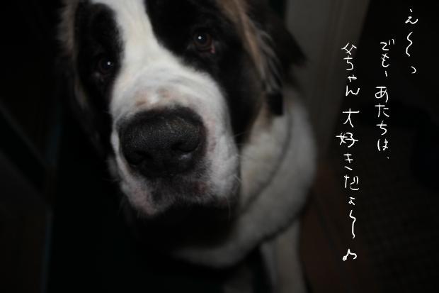 04_20110514020949.jpg