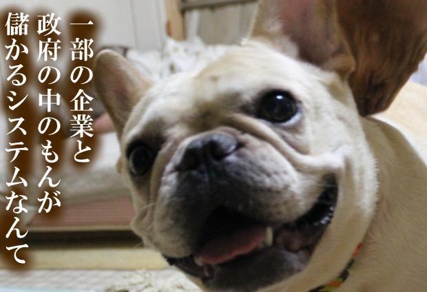 04_20110615014730.jpg