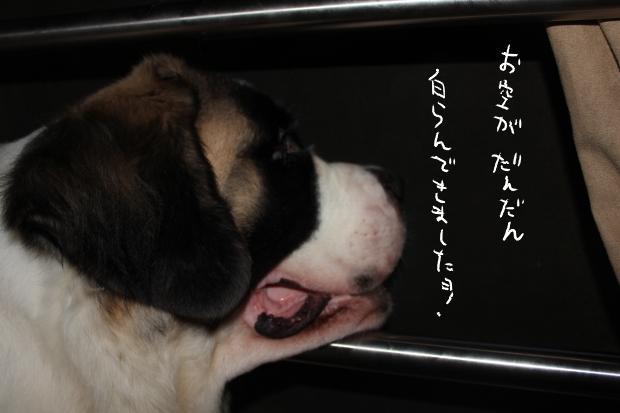 04_20110630060626.jpg