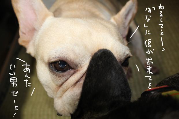 04_20110714154136.jpg