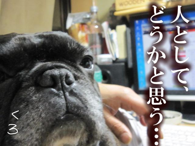 05_20110521233923.jpg