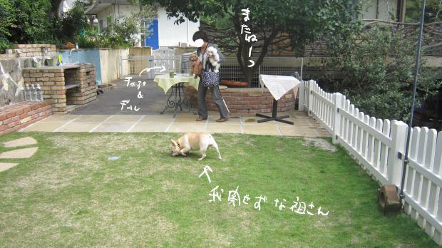 05_20111003202215.jpg