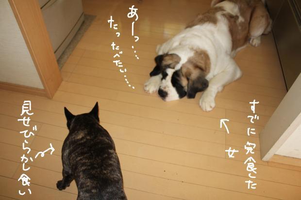 05_20111019020732.jpg