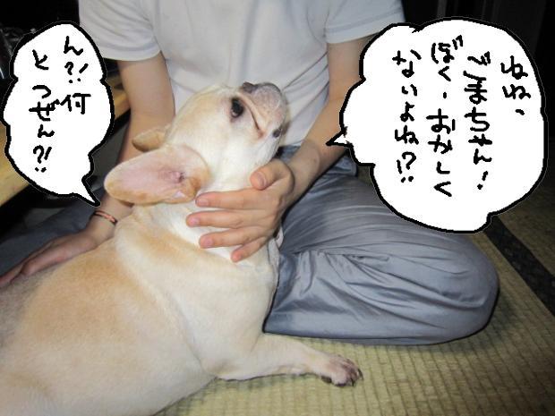 06_20110529000134.jpg