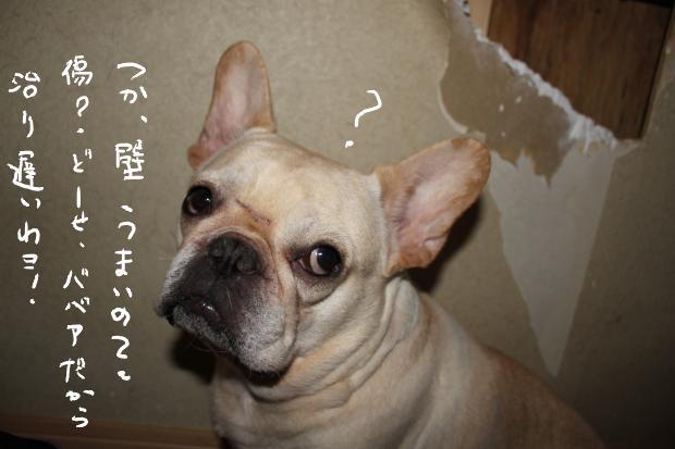 06_20110602012939.jpg