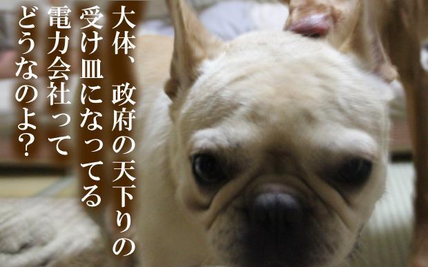 06_20110615014730.jpg