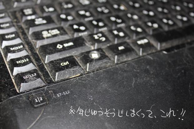 06_20110622042756.jpg