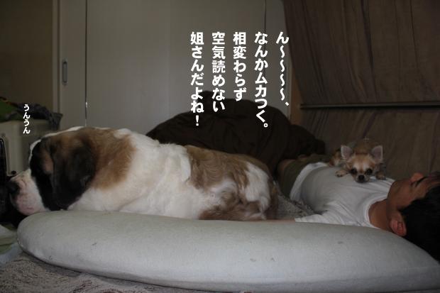 06_20111105225508.jpg