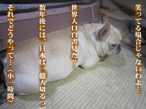 07_20110507022607.jpg