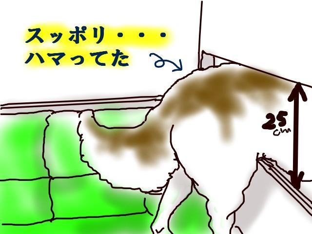 07_20110703041735.jpg