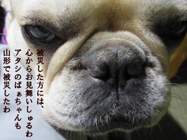 08_20110409013158.jpg
