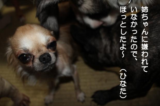 09_20110824143718.jpg