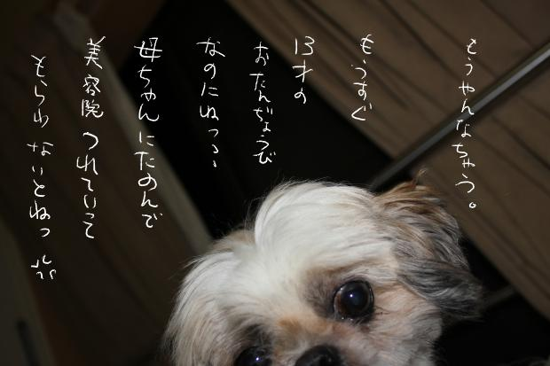 09_20110930030703.jpg
