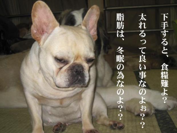 10_20110507032946.jpg