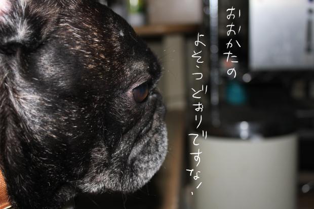 10_20110514021043.jpg