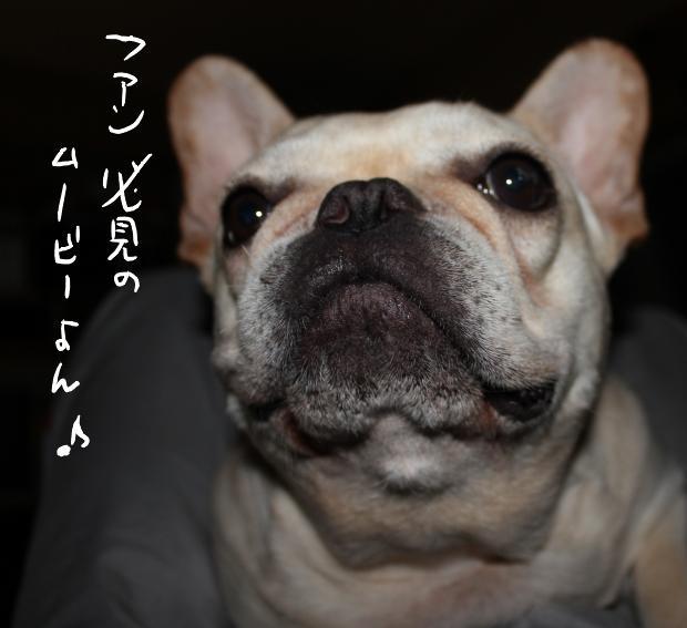 10_20110520020612.jpg