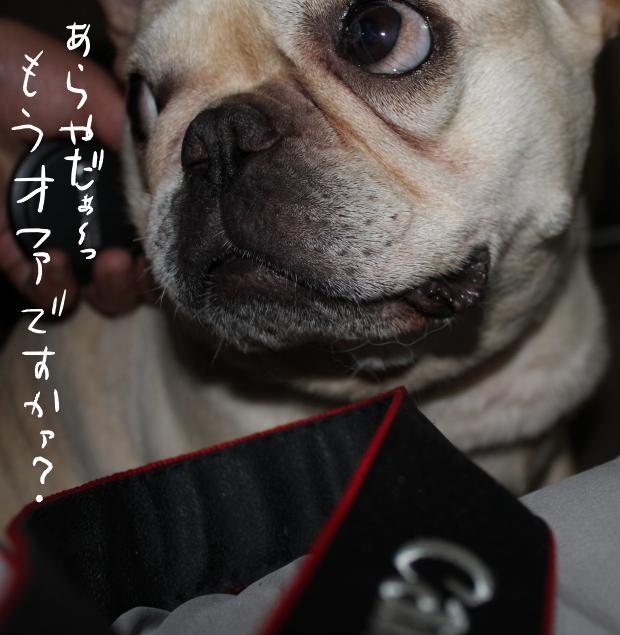11_20110520020612.jpg