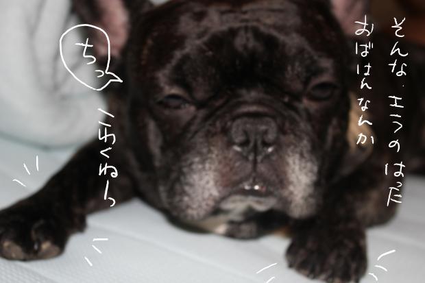 11_20110620041509.jpg