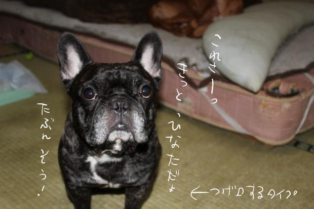 11_20111018015426.jpg