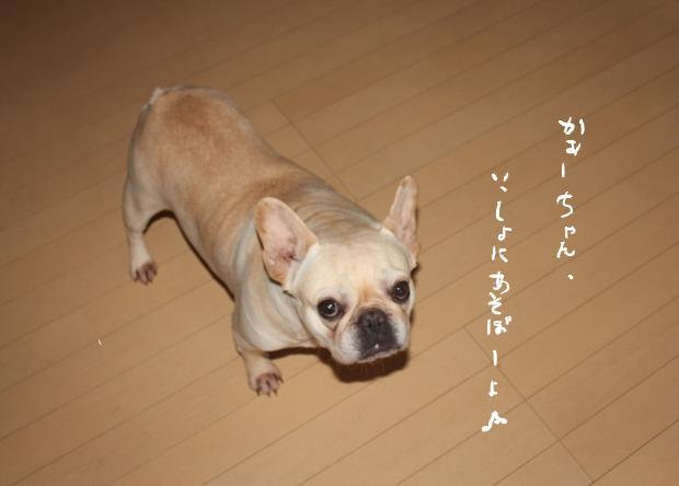 12_20110428001745.jpg