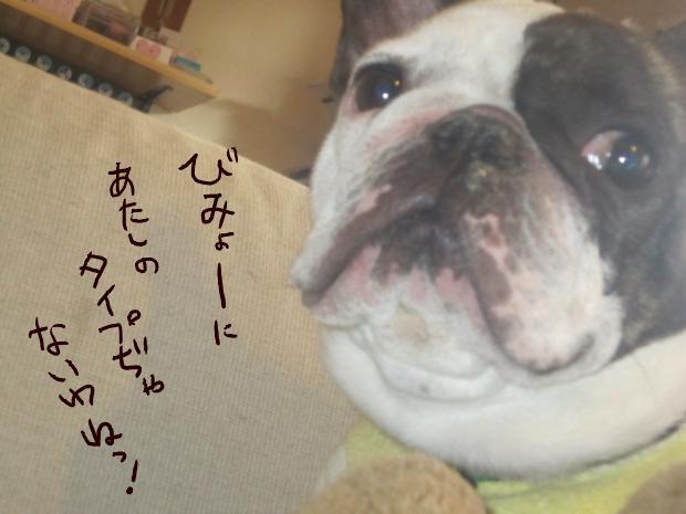 12_20110509004412.jpg