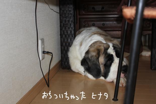 12_20111019020816.jpg