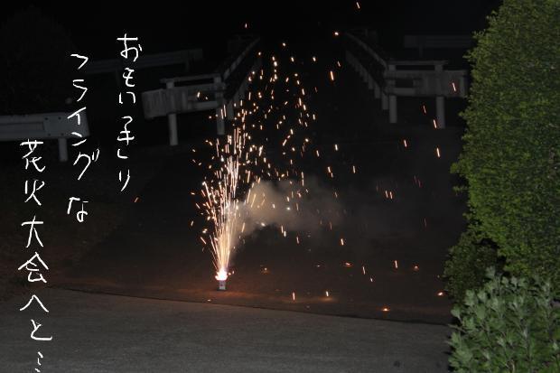 14_20110516013628.jpg