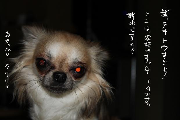 14_20110629032251.jpg