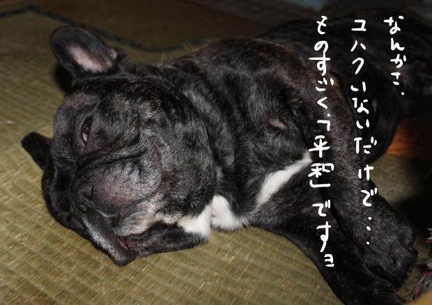 14_20110703052040.jpg