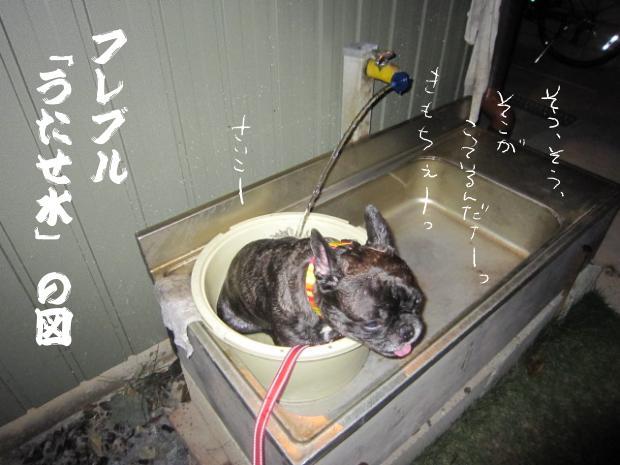 15_20110912014231.jpg