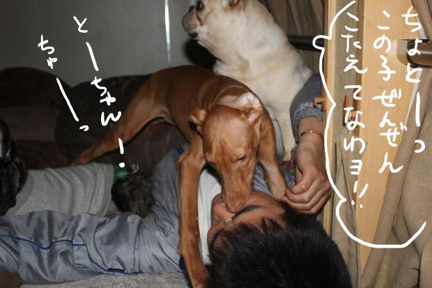 16_20110420015426.jpg