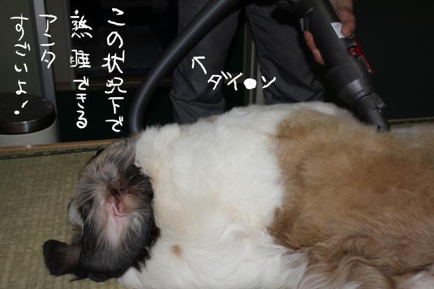 16_20110523232907.jpg