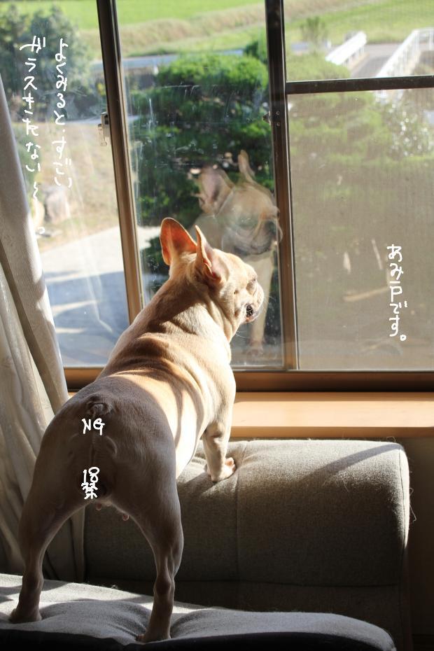 16_20111019020900.jpg