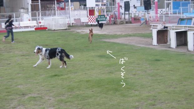 18_20111012193507.jpg