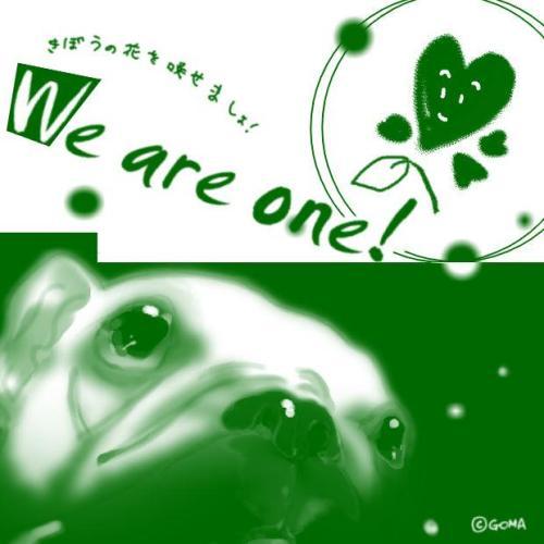 goma ミドリ2緑