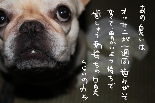 20_20110711234616.jpg