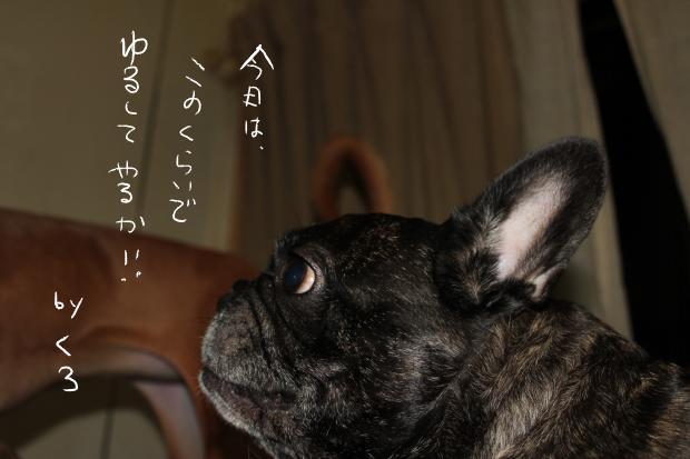 20_20111018015945.jpg