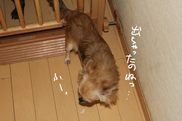 22_20110711234616.jpg