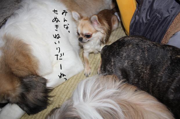 27_20110528012401.jpg