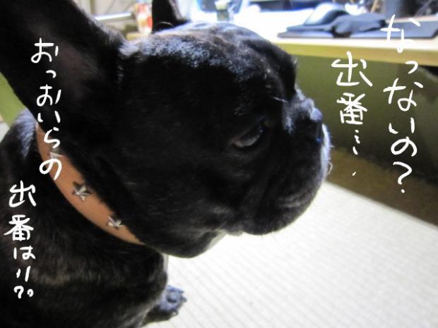 2_20110519015451.jpg