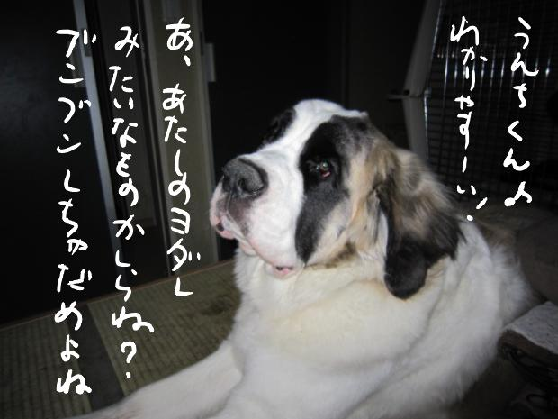 hinata_20110317081202.jpg