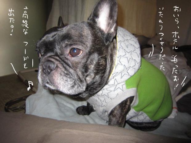 kuro1_20110330154905.jpg