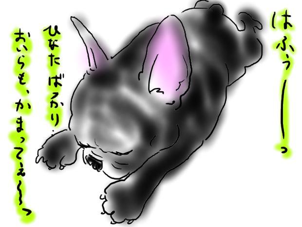 kuro_20110430013120.jpg
