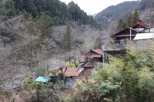 hananeko-2_383.jpg