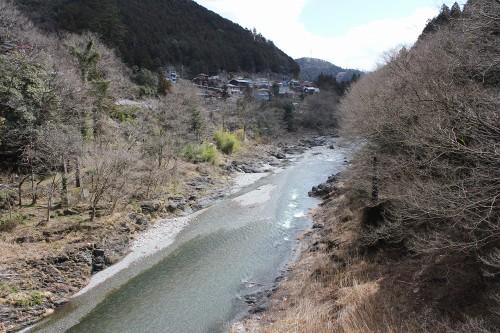 hananeko_063_20120404000315.jpg