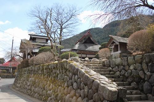 hananeko_169.jpg