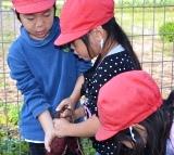 収穫とマーチン具 (4)