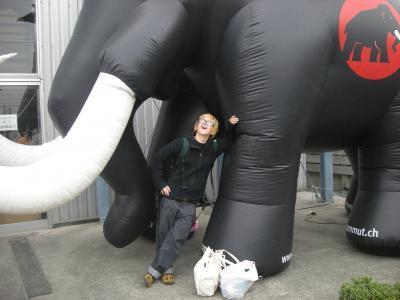 mammut 7