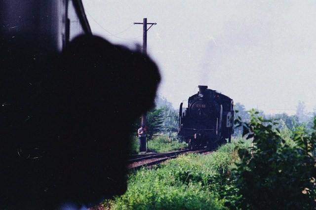 11-c1180.jpg