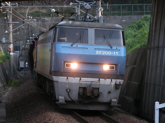 ef200-11-kanaya-kikugawa.jpg